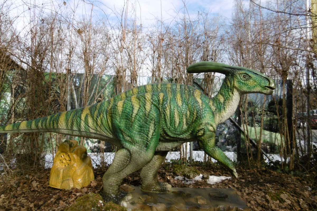 Neu im Dinopark: Parasaurolophus : HAPPu0026#39;s Reptilienzoo